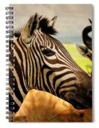 Stripes And Horns 2 Spiral Notebook