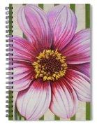 Stripes-dahlia I Spiral Notebook