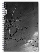 Stroke Of Midnight Spiral Notebook