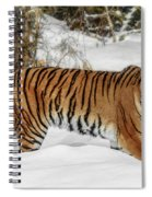 Stroll In The Snow Spiral Notebook