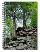Strong Roots Spiral Notebook