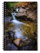 Strongs Canyon Spiral Notebook