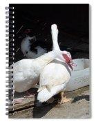Stubbs On Lanzarote Spiral Notebook