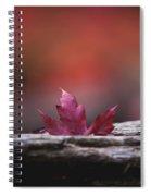 'stuck In Autumn' Spiral Notebook