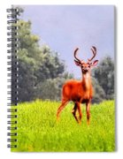 Stud Spiral Notebook