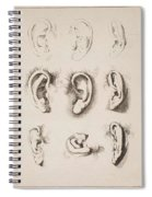 Studies Ears Anonimo, Blooteling Abraham Spiral Notebook
