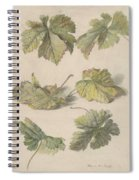 Studies Of Vine Leaves, Willem Van Leen, 1796 Spiral Notebook