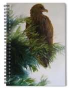 Study, Eagle Spiral Notebook