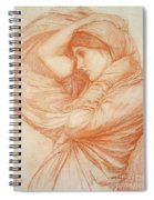 Study For Boreas Spiral Notebook