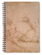 Study For The Figure Of Diogenes In The School Of Athens Spiral Notebook