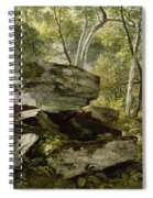 Study From Nature   Rocks And Trees Spiral Notebook