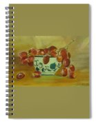 Study In Glazing Spiral Notebook