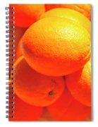 Study In Orange Spiral Notebook