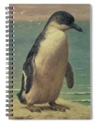 Study Of A Penguin Spiral Notebook