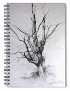 Study Of A Tree Spiral Notebook