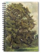Study Of An Ash Tree Spiral Notebook