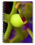 Study Of Pistil And Stamen Spiral Notebook