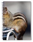 Stuff It In Spiral Notebook