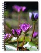 Stuff Of Dreams Spiral Notebook