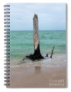 Stump Pass Tree In Color Spiral Notebook