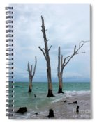 Stump Pass Triplets Spiral Notebook