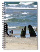 Stumpy Beach Spiral Notebook