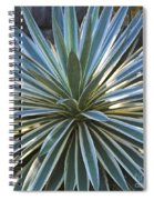 Stunning Agave Plant Spiral Notebook