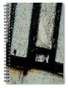 Subdivisions Spiral Notebook