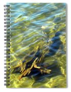 Submerged Tree Abstract Spiral Notebook