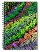 Succulent 1 Spiral Notebook