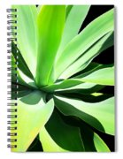 Succulent Agave Art By Sharon Cummings Spiral Notebook