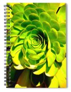 Succulent Close Up Spiral Notebook