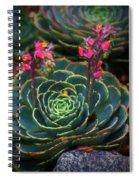 Succulent Flowers Spiral Notebook
