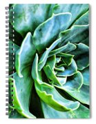 Succulents Spiral Notebook
