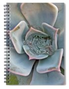 Succulent In Pastels Spiral Notebook
