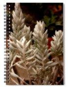 Succulent Stalks Spiral Notebook