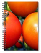 Succulent Tomatoes Spiral Notebook