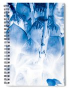 Succulents In Bleu Spiral Notebook