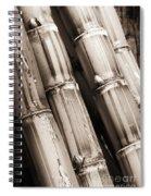 Sugar Cane - Sepia Spiral Notebook