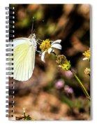 Sulfur Feeder Spiral Notebook