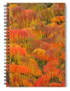 Sumac  Spiral Notebook