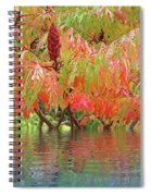 Sumac Tree Autumn Reflections Spiral Notebook