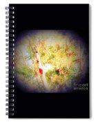 Sumac Tree In The Sunlight Spiral Notebook