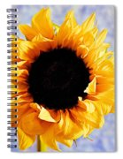 Summer Beauty Spiral Notebook
