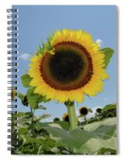 Summer Begin Spiral Notebook