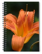 Summer Bloom-3 Spiral Notebook