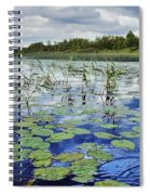 Summer Blue  Lake Under Clody Grey Sky With Forest On Coast Spiral Notebook