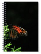Summer Capture Spiral Notebook