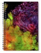 Summer Contrast Spiral Notebook