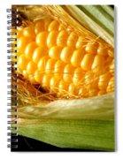 Summer Corn Xl Farm Nature Harvest Spiral Notebook